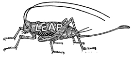 Cricket_Leap